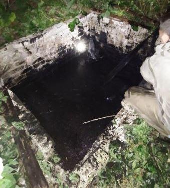 Корову достали из выгребной ямы под Харьковом