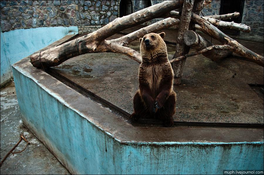 Харьковский зоопарк история